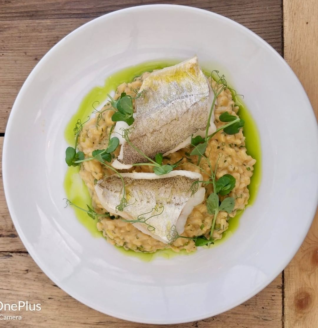 Grilled whiting, brown crab risotto cooked with crab bones finished with brown crab meat, peashoots, chives, dill butter and lemon. On the set lunch and pre-theatre menu at Chapel Row. #batheats #visitbath
